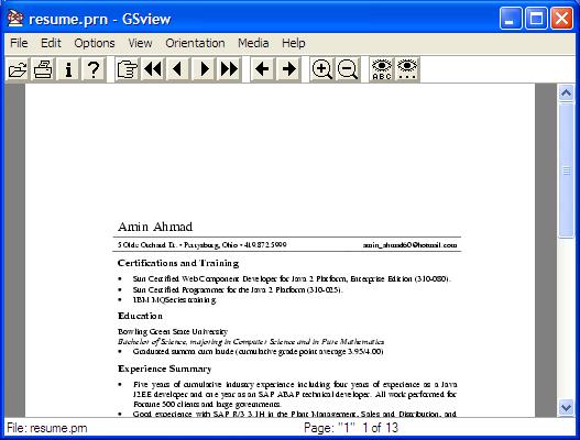 open prn file in word